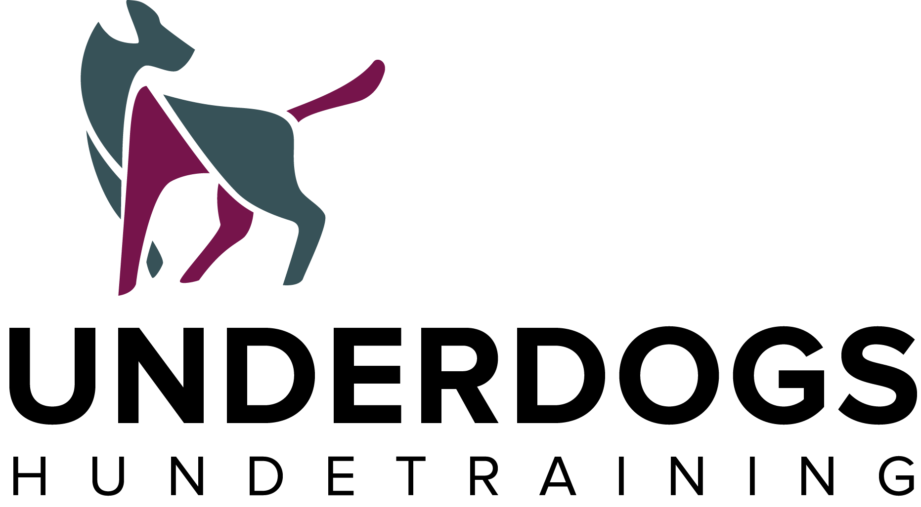 Underdogs Hundetraining
